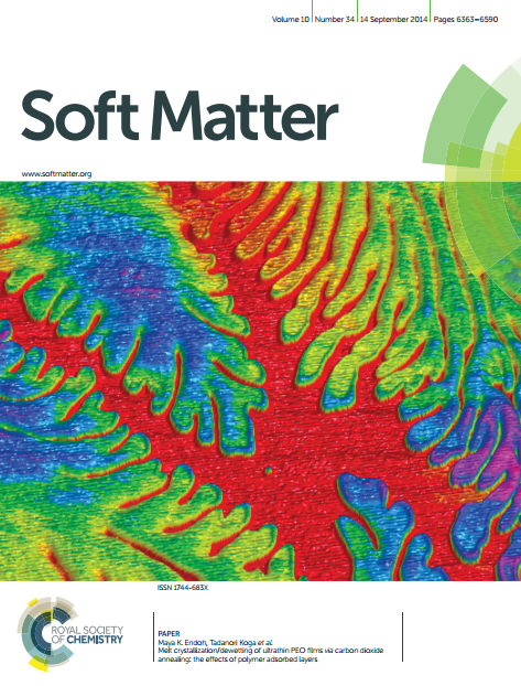 Melt crystallization/dewetting of ultrathin PEO films via carbon dioxide annealing: the effects of polymer adsorbed layers