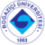 bogazici-universitesi-logo-e1573079929879